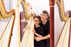 Harps -8882